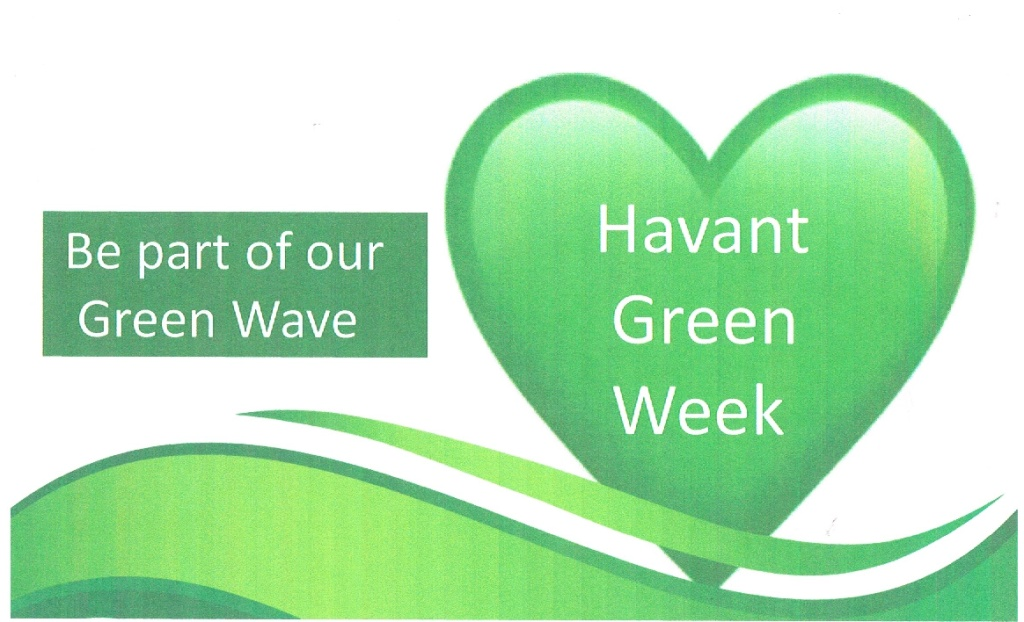 This image has an empty alt attribute; its file name is green-wave-4-1.jpg